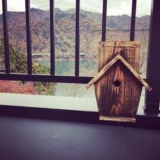 手作りの鳥の巣箱